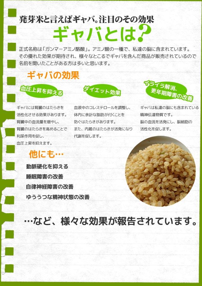 hatuga_top03