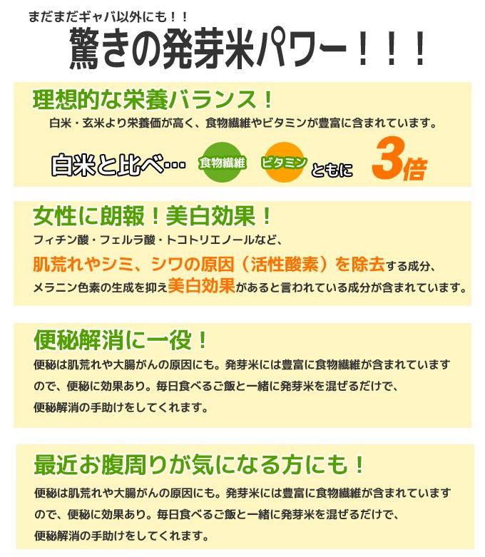 hatuga_top04